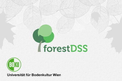 BOKU - Forest DSS